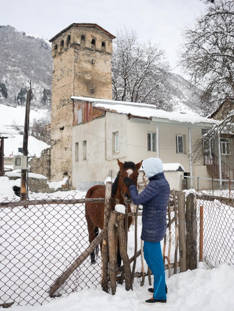 Horses and towers in Mestia